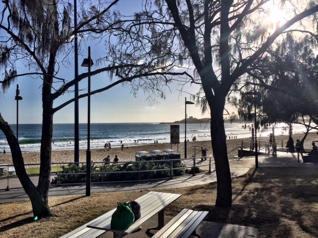 Surfing Sunshine Coast